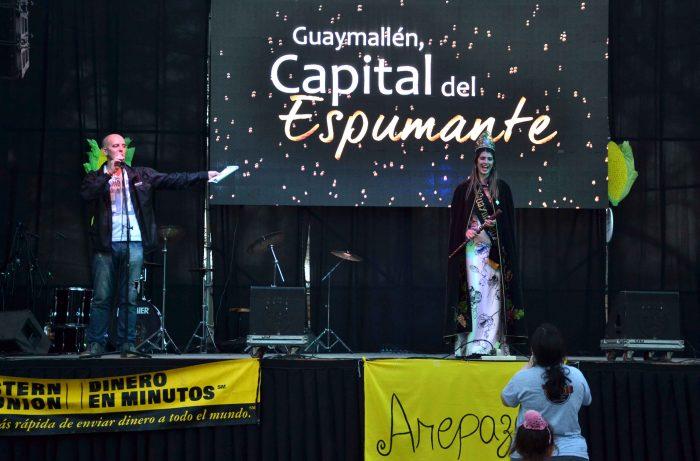 Día mundial de la Arepa. plaza San José (14)