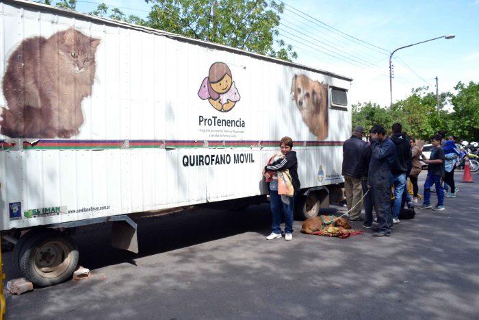 Programa Mascotas Argentinas - Quir_fano m_vil (13)