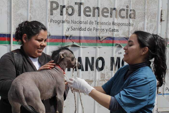 programa mascotas argentinas (6)