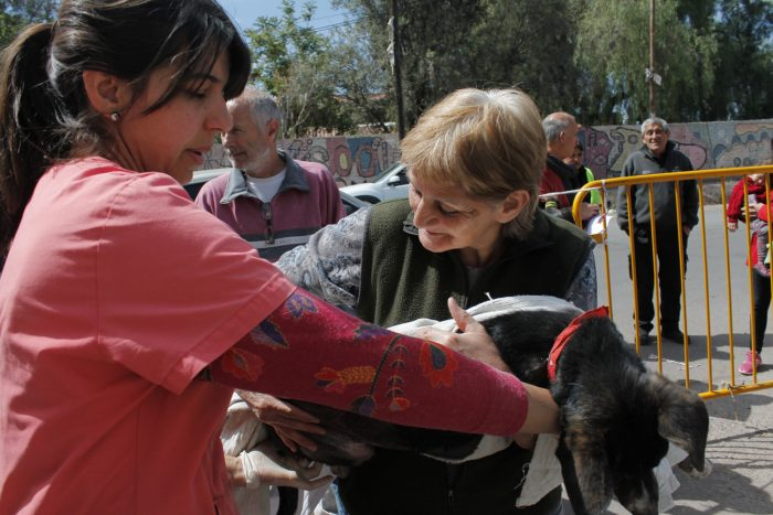 programa mascotas argentinas (7)
