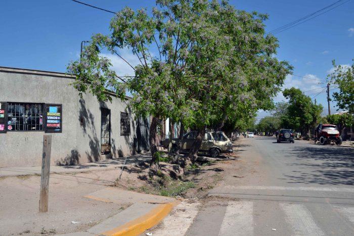 Calle Granaderos de San Martín (4)