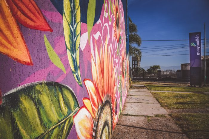 Nuevos murales (5)