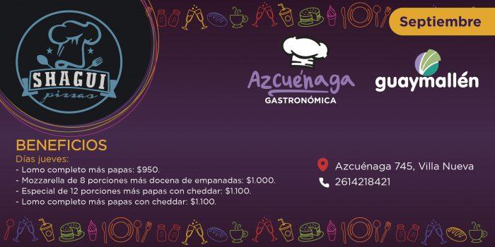 PLACA_azcuenaga_BRIDDS