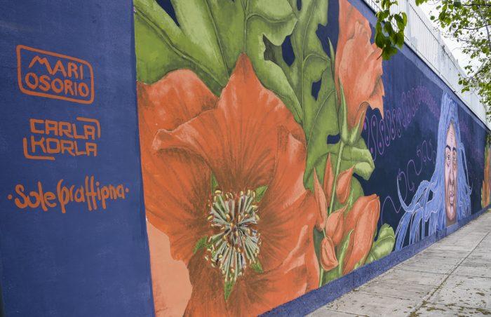 Mural Mujer originaria (10)