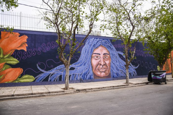 Mural Mujer originaria (4)