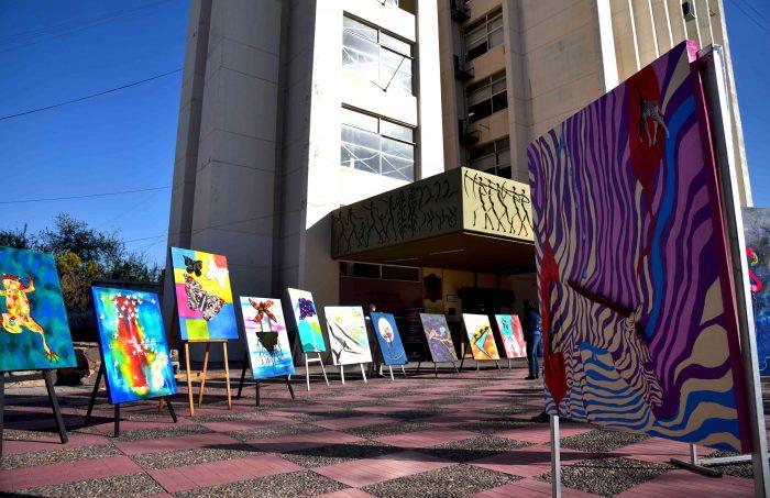 Obras de arte a centros de salud (29)